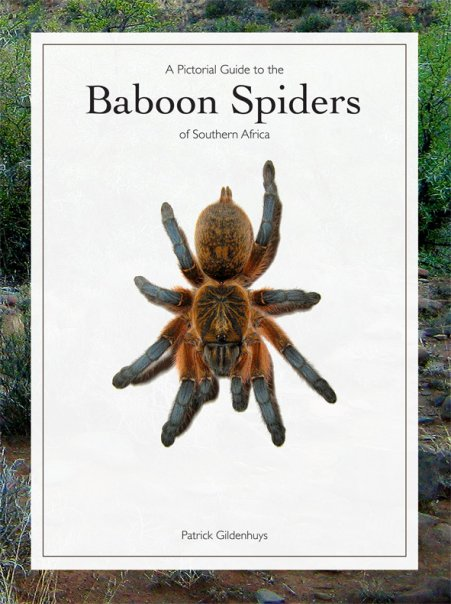 A Pictorial Guide to the Baboon Spiders of Southern Africa