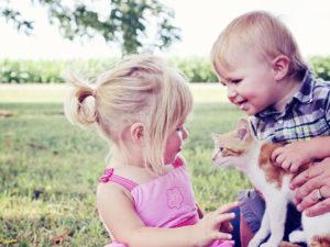 Tarantulas around Children and pets