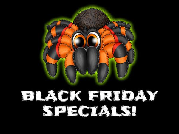 MyMonsters.co.za Black Friday Tarantula Specials!