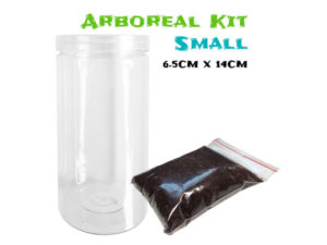 Arboreal Spiderling Tarantula Kit - Small