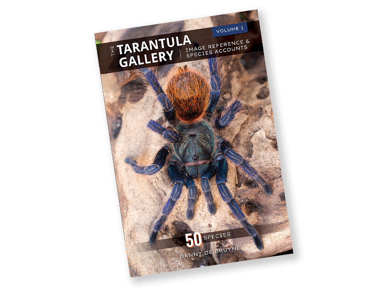 The Tarantula Gallery - Image Reference & Species Accounts - Volume 1