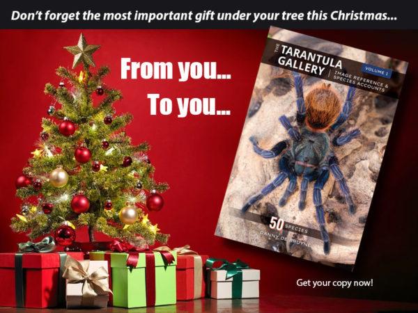 The Tarantula Gallery, Volume 1 - Image Reference & Species Accounts - Tarantula Care Guides - Tarantula Books